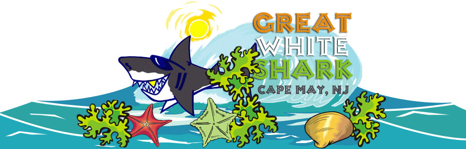 Great White Shark–Cape May T-shirts Sweatshirts Caps Gifts