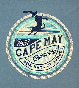 T-shirt showing dog playing with a frisbee